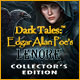 Download Dark Tales: Edgar Allan Poe's Lenore Collector's Edition game