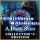 Download Enchanted Kingdom: A Dark Seed Collector's Edition game
