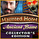 Download Haunted Hotel: Ancient Bane Collector's Edition game