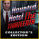 Download Haunted Hotel: The Thirteenth Collector's Edition game