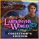 Download Labyrinths of the World: A Dangerous Game Collector's Edition game