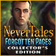 Nevertales: Forgotten Pages Collector's Edition Game