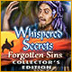 Download Whispered Secrets: Forgotten Sins Collector's Edition game