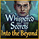 Download Whispered Secrets: Into the Beyond game