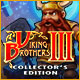 Viking Brothers 3 Collector's Edition Game